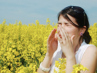 Don't Let Allergies Get the Best of You this Season