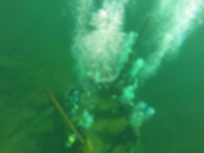 Turma de mergulho - basico (29).JPG