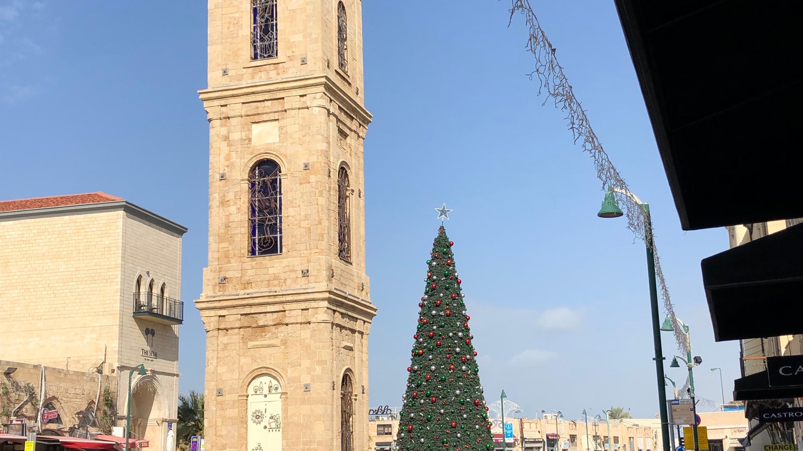 Christmas Tree in Joppa