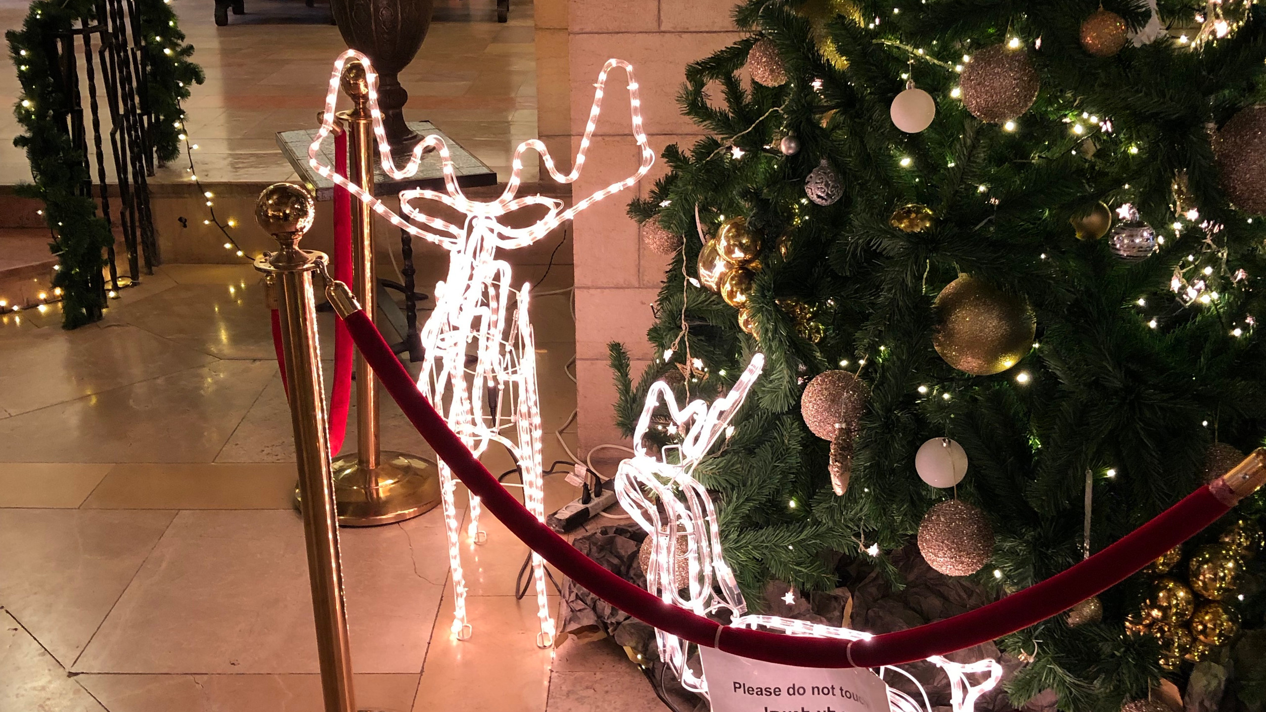 Christmas Decoration at YMCA
