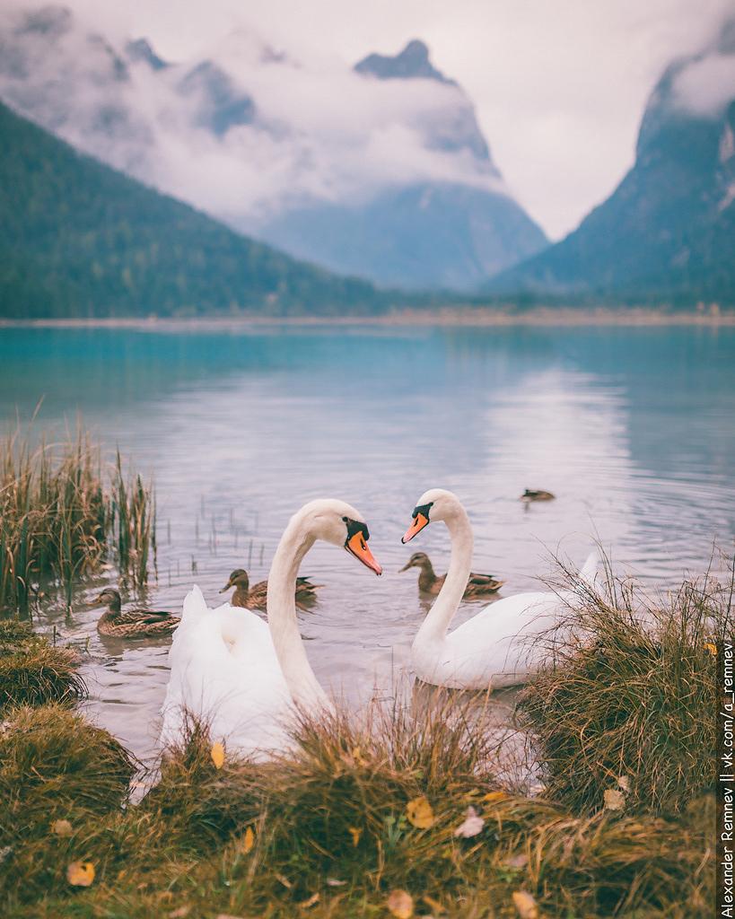 Озеро Lago di Dobbiaco