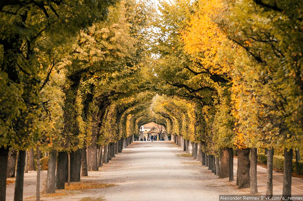 Парк Schonbrunn