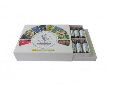 Kit Florais de Bach Healing Herbs