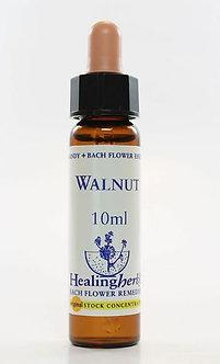 Floral Walnut