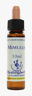 Floral Mimulus