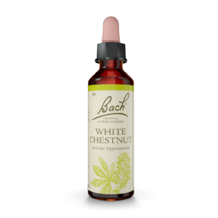 Floral White Chestnut - Bach Original