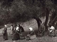 095 - Πρέβελης Κρήτης  1911.jpg