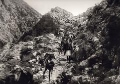 086 - Ταΰγετος  1903.jpg
