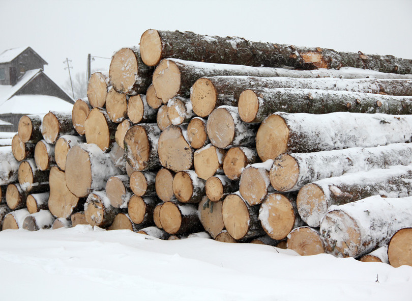 Spruce (whitewood) logs.