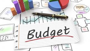 2020 - 21 Budget Summary