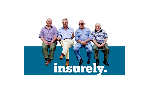 Insurely NZ Professional Insurance Brokers