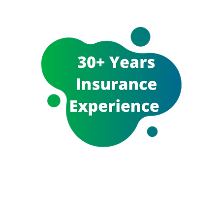 Insurely NZ Exeperienced Insurance Brokers