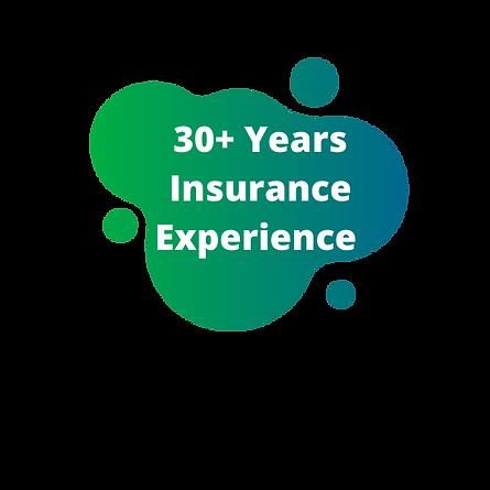 Insurely NZ Exeperienced Insurance Brokers
