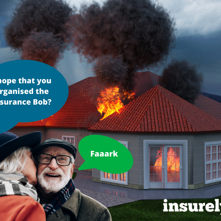 Why We Love Insurance? (No, Really)