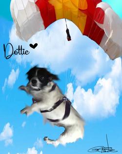 Pet Glamour Shots (digital pet art)