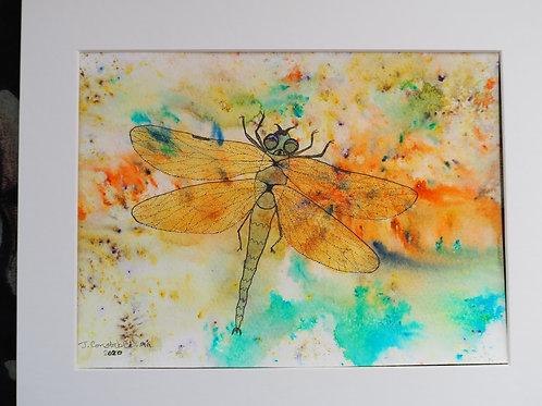 Dotty Dragonfly #3