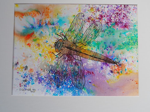Dotty Dragonfly #7