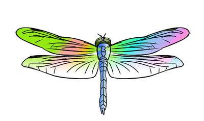 8-free-dragonfly-clip-art-l.jpg