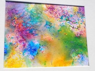 colour pic.JPG