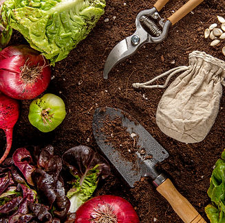 top-view-garden-tool-with-veggies.jpg