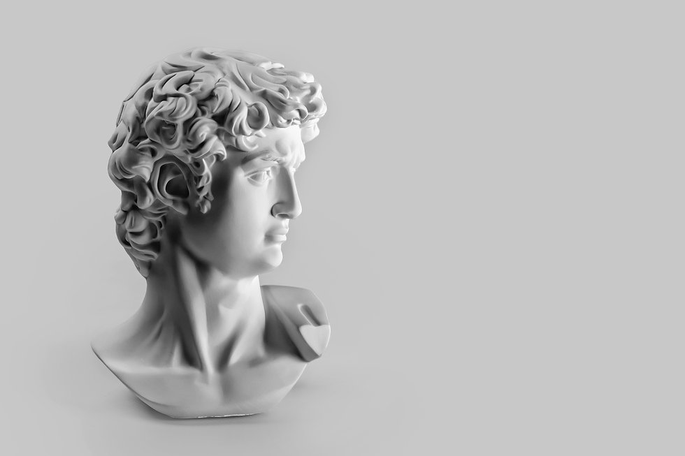 gypsum-statue-david-s-head.jpg