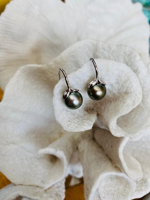 Whale Tail Sterling Silver Earrings & Tahitian Pearls