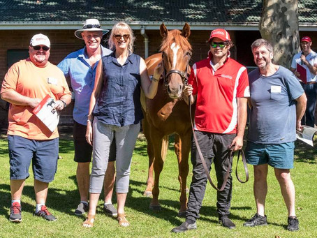 Opinion Piece: Racehorse Syndication