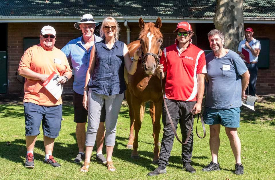 Champion Thoroughbreds Open Day 2018