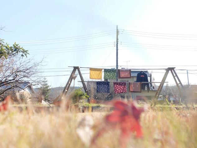 sn023/芝庭/冬