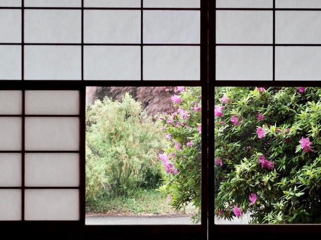 w011/和室8畳/雪見障子/春