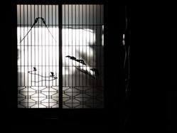 w006/和室8畳/付け書院/冬