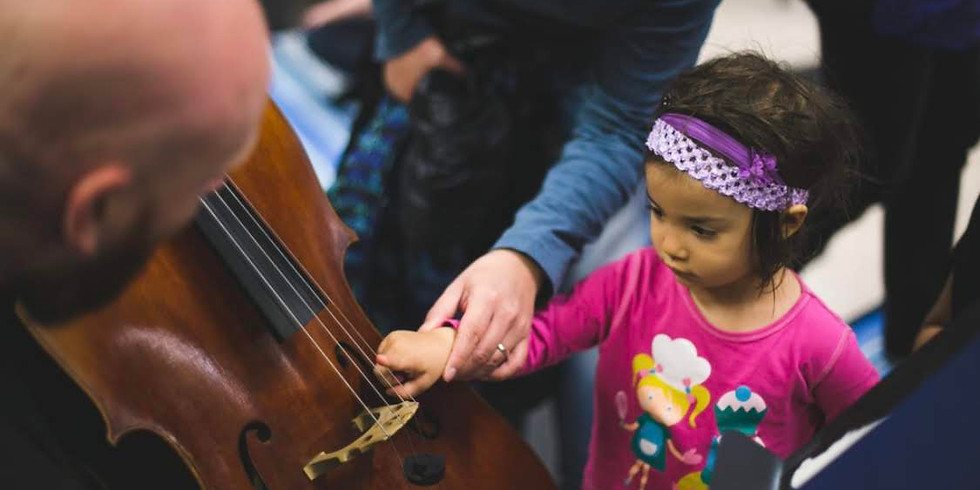 Summer Soiree: A benefit for Little Mozart Foundation