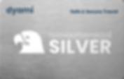 dyami silver abonnement kaart