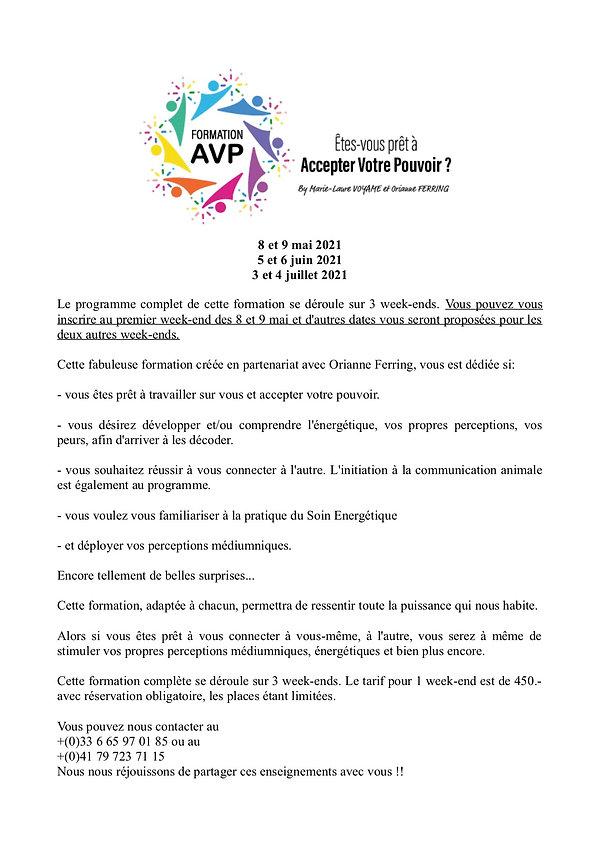 AVP_programme.jpg