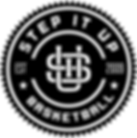 StepitUp_logo_version1_high.png