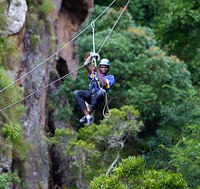 1538556903_1!!-!!canopy tour.jpg