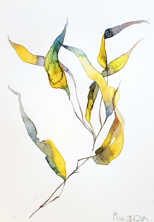 Herbal   Gold #3