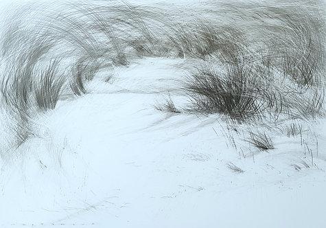 Beach #103
