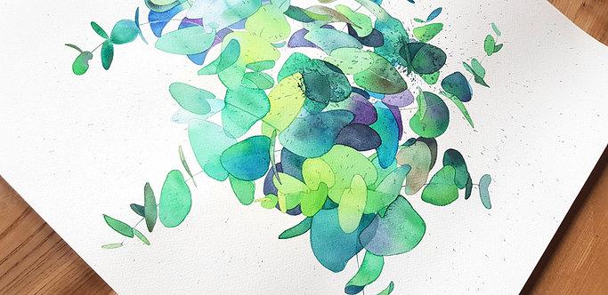 Herbal | Eucalyptus #6 XL