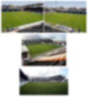 Stadium 3.jpg