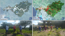 Nature-based resilience in Vanuatu