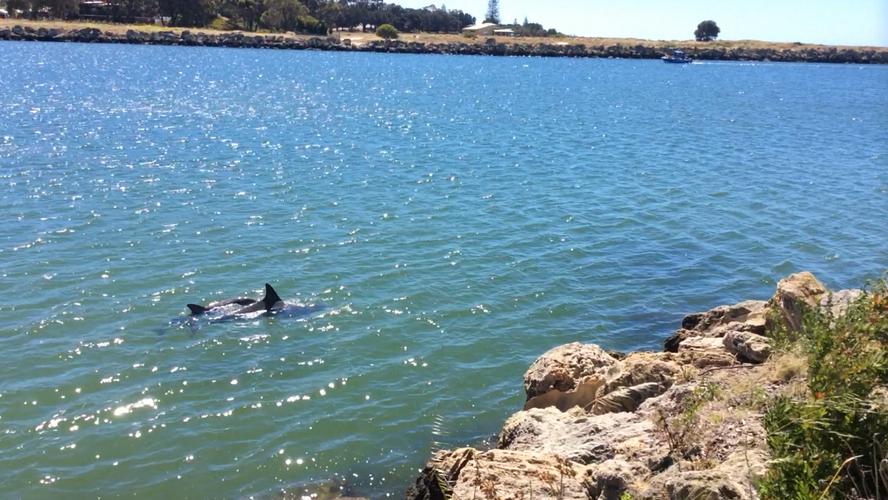 Eco-friendly coastal asset inspections