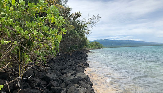 Dan Samoa 02 - Copy.JPG