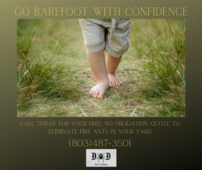 barefoot ad 2.png