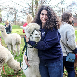 Enhancing student wellbeing: Edinburgh University's animal therapy scheme