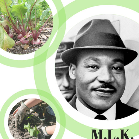 2018 MLK Day of Service - On Campus