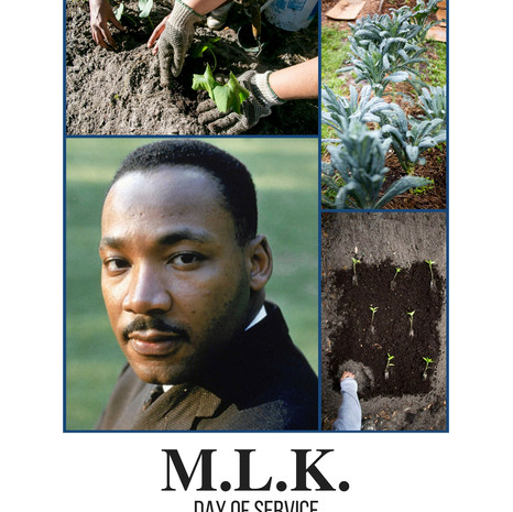 2018 MLK Day of Service - Community Poster