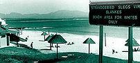 Apartheid: Global Perspectives, 1946-1996