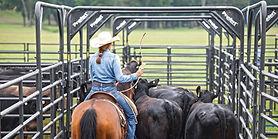 priefert-portable-cattle-pens-bqa-beef-q