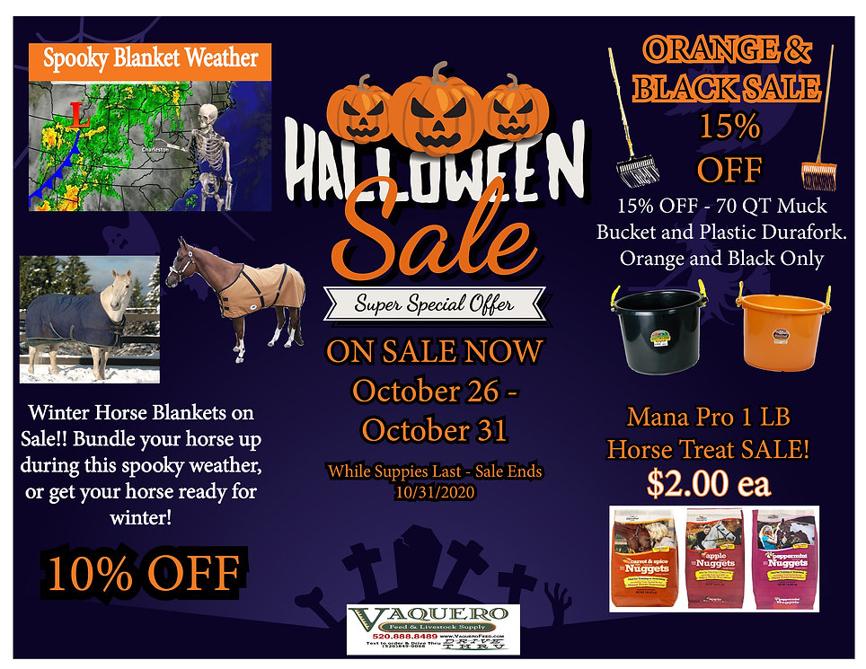 Halloween-Sale-Special-Offer.jpg